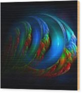 Xenolith-2 Wood Print
