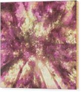 Yaddo Xxiv Wood Print