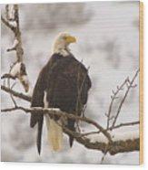 Yakama Canyon Eagle Wood Print