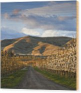 Yakima Valley Spring Wood Print