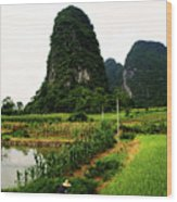 Yangshuo's Limestone Karsts Wood Print