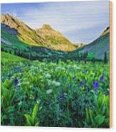 Yankee Boy Basin Flowers Wood Print