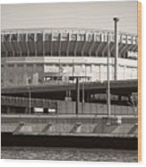 Yankee Stadium    1923  -  2008 Wood Print