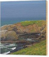 Yaquina Head Lighthouse And Bay Wood Print