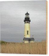 Yaquina Lighthouses - Yaquina Head Lighthouse Western Oregon Wood Print by Christine Till
