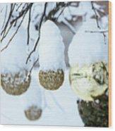 Yarn In The Snow Wood Print