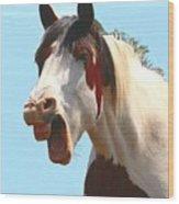 Yawning Horse ... Montana Art Photo Wood Print