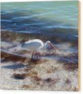 Yay Seaweed Wood Print