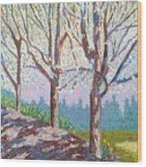 Yay-springtime Wood Print
