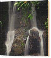 Yaya Waterfalls in Winter Wood Print