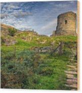 Ye Olde Path  Wood Print