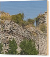 Yedikule Fortress Ruins Wood Print