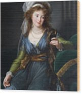 Yekhaterina Vasilievna Engelhardt, Countess Skavronskaya, Later Countess Litta E. Vigee-lebrun Wood Print