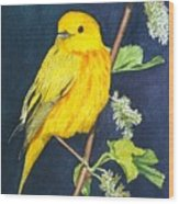 Yelllow Warbler Wood Print