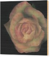 Yello Rose Wood Print