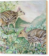 Yello-striped Mouse Deer Wood Print