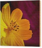 Yellow-1 Wood Print