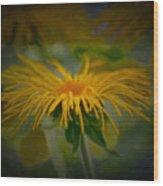 Yellow 2 Wood Print