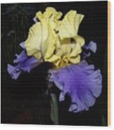 Yellow And Blue Iris Wood Print