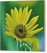 Yellow And Green 2 Wood Print