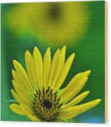 Yellow And Green 3 Wood Print