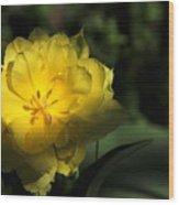 Yellow And Green No. 3 Wood Print