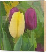 Yellow And Purple Tuilps Wood Print