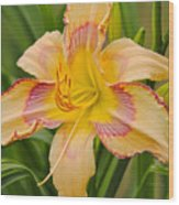 Yellow And Red Lily Wood Print