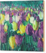 Yellow And Violet Tulips Wood Print