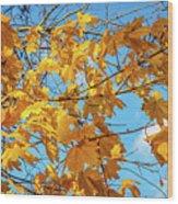 Yellow Autumn Leaves 2 Wood Print