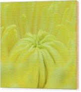 Yellow Banana Flower Wood Print