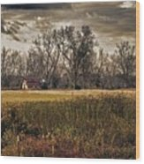 Yellow Barn And The Field Wood Print