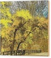 Yellow Bend Wood Print by Joyce Kimble Smith