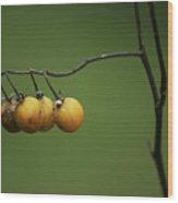 Yellow Berries Wood Print