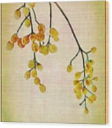 Yellow Berries Wood Print