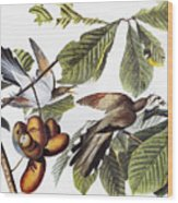 Yellow-billed Cuckoo Wood Print