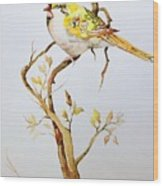 Yellow Bird Wood Print