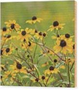 Yellow Black Eyed Susan Wildflowers In Summer Wood Print