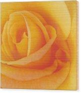 Yellow Blend Wood Print
