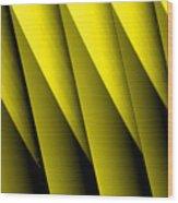 Yellow Borders Wood Print