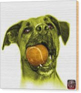 Yellow Boxer Mix Dog Art - 8173 - Wb Wood Print