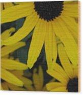 Yellow Bunch II Wood Print