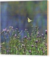 Yellow Butterfly Flyaway Wood Print