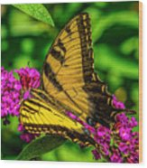 Yellow Butterfly In The Garden Wood Print