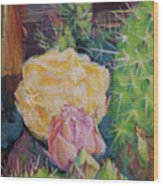 Yellow Cactus Flower Wood Print