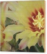 Yellow Cactus Plant Flower Wood Print