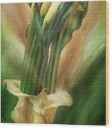 Yellow Callas In Calla Vase Wood Print