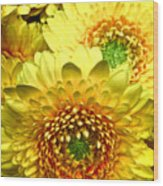 Yellow Cluster Wood Print