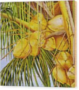 Yellow Coconuts- 01 Wood Print