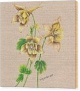 Yellow Columbines Wood Print